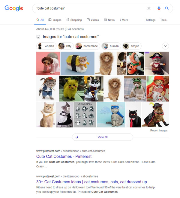 10-google-search-tips-to-help-your-find-what-you-want-cute-cat-costumes-use-quotes-in-search